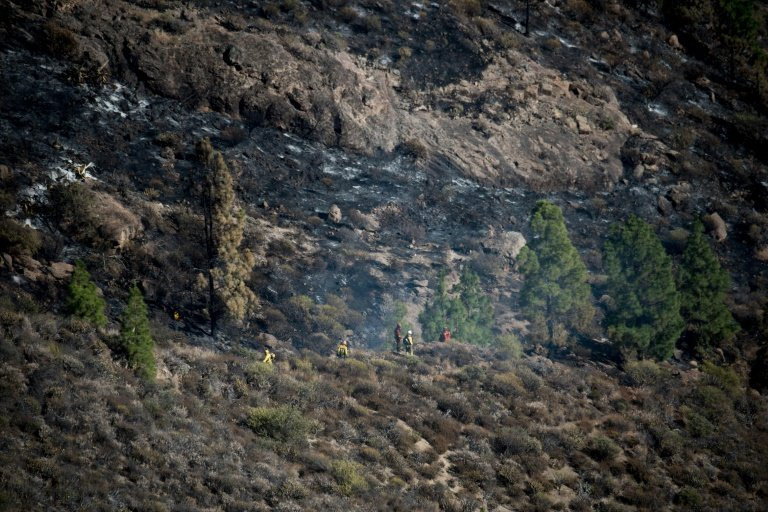 Gran Canaria towns evacuated as wildfire rages
