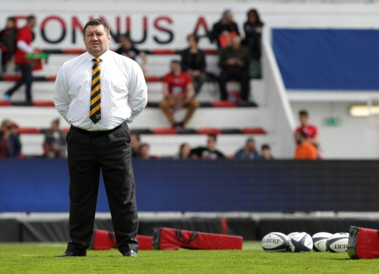 Young steps down as Wasps coach for 'interim period'