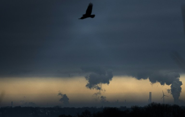 Global carbon dioxide emissions decline by 7 percent in 2020