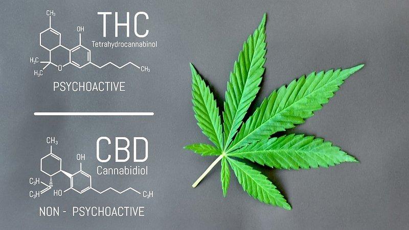 THC un CBD