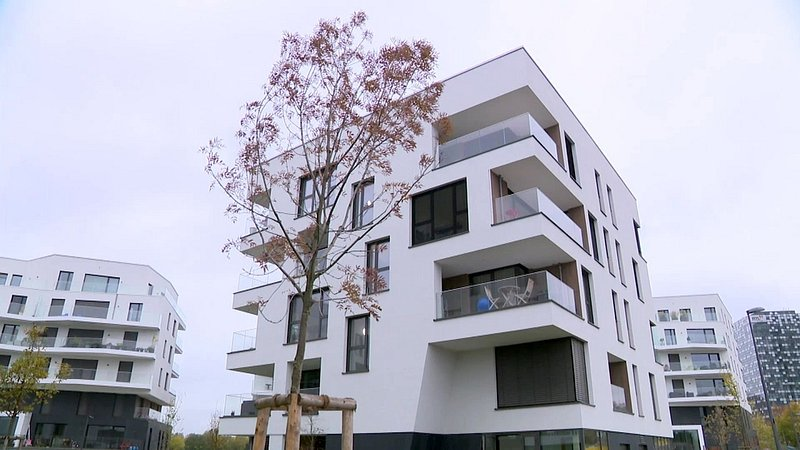 rtl immobilien